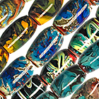 Local Handmade Glass image