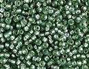 Japanese Miyuki Glass Seed Bead Size 15 - Moss Green - Silver Lined Semi-frost