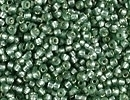 Seed Beads Miyuki Seed size 15 moss green (dyed) silver lined semi frost