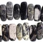 Black Silver Leaf Jasper 5 x 15mm flat chip mixed colors