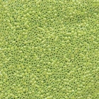 Seed Beads Miyuki delica size 11 crisp green apple ab transparent iridescent