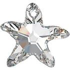 starfish (6721)