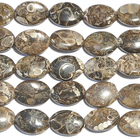 Turritella Agate 10 x 14mm flat oval mixed colors