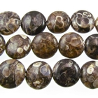 Turritella Agate 12mm coin mixed colors