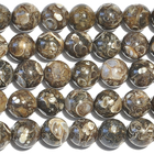 Turritella Agate 6mm round mixed colors