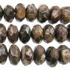 Turritella Agate 8mm faceted rondell mixed colors