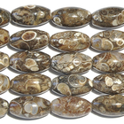 Turritella Agate 15 x 30mm oval mixed colors