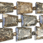 Turritella Agate appx 20 x 25mm faceted trapezoid mixed colors
